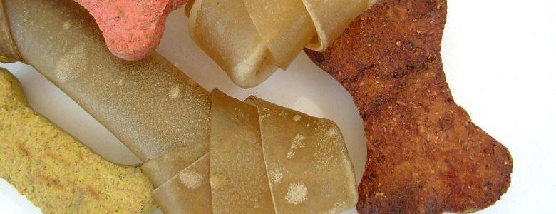 ダックスフンドの餌の種類や量、回数はどれぐらいが良いの?
