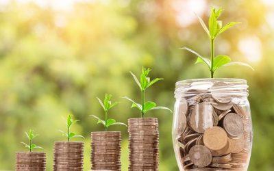うさぎを飼育するのにかかる費用。月どれくらい?
